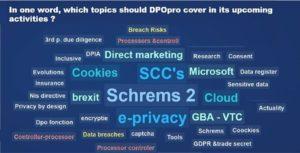 En un mot, quels thèmes DPO-pro devrait couvrir dans ses activités à venir?